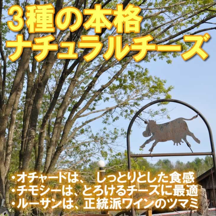半田ファーム【ルーサン】400g ...