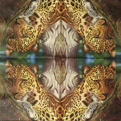 Leopard画像