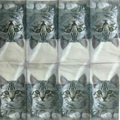 CUDDLY CAT(21cm ミニナプキン)の画像