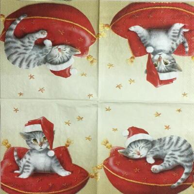 赤いクッションと猫(25cmカクテルサイズ)の画像