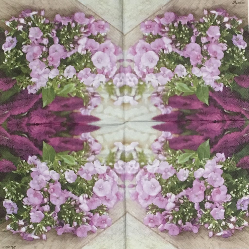 紫の花の画像