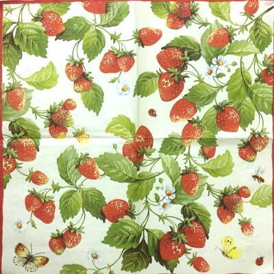 Berry whiteの画像