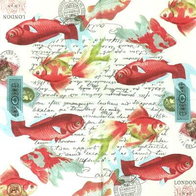 金魚(25cmカクテルサイズ)の画像