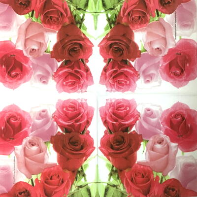 Elegant Rosesの画像