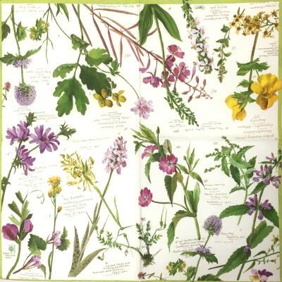 Wild Flowersの画像