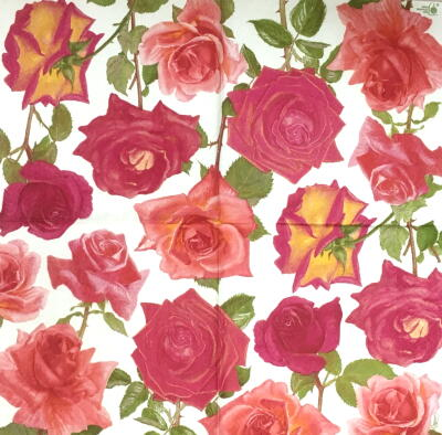 Rose Gardenの画像