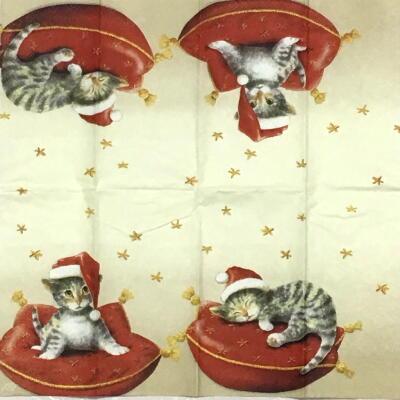 サンタキャット(21cmティッシュサイズ)の画像