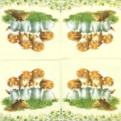4匹の子猫の画像