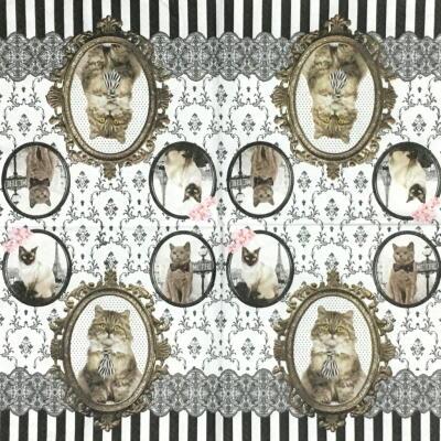BAROCCO CATSの画像