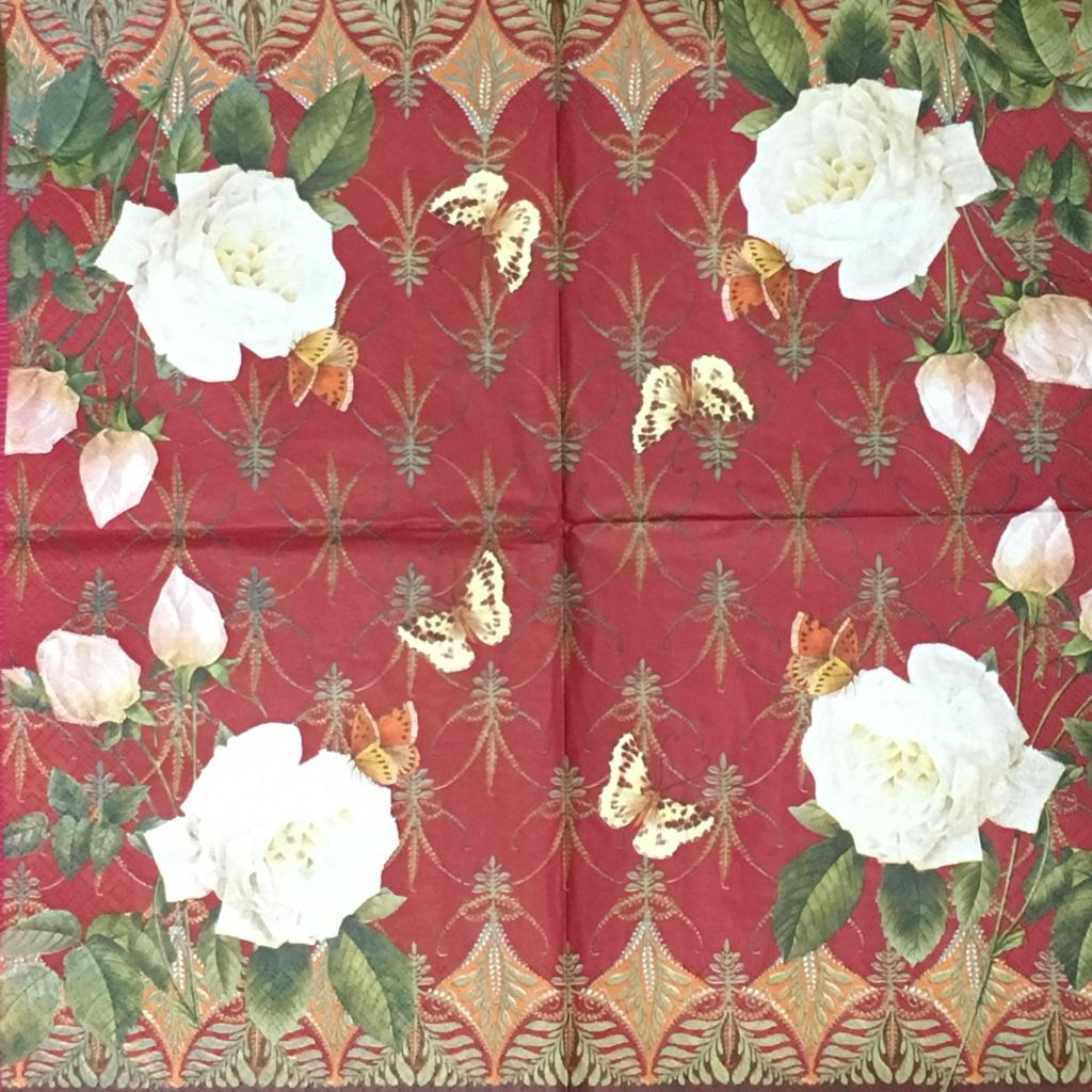 赤い背景がきれいな白バラの画像
