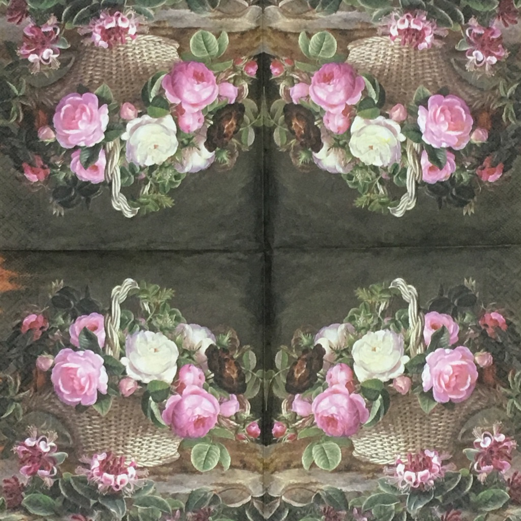 Old England Rosesの画像