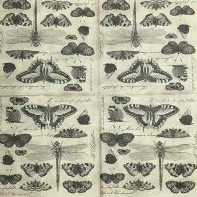 Butterfly collection画像