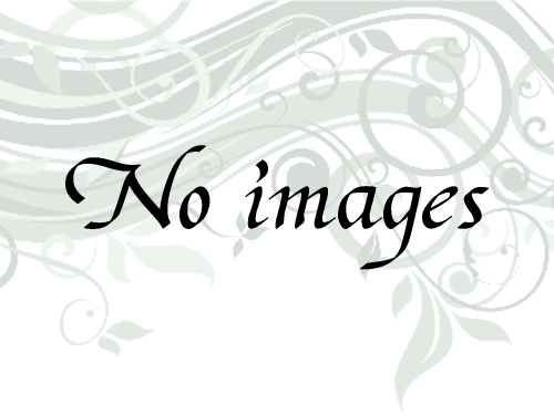 16年野生普耳散茶_100gの画像