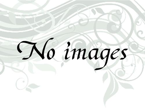 16年野生普耳散茶_100g画像