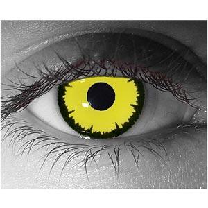 Angelic Yellow エンジェル/アンジェリック イエロー 1瓶1枚入画像