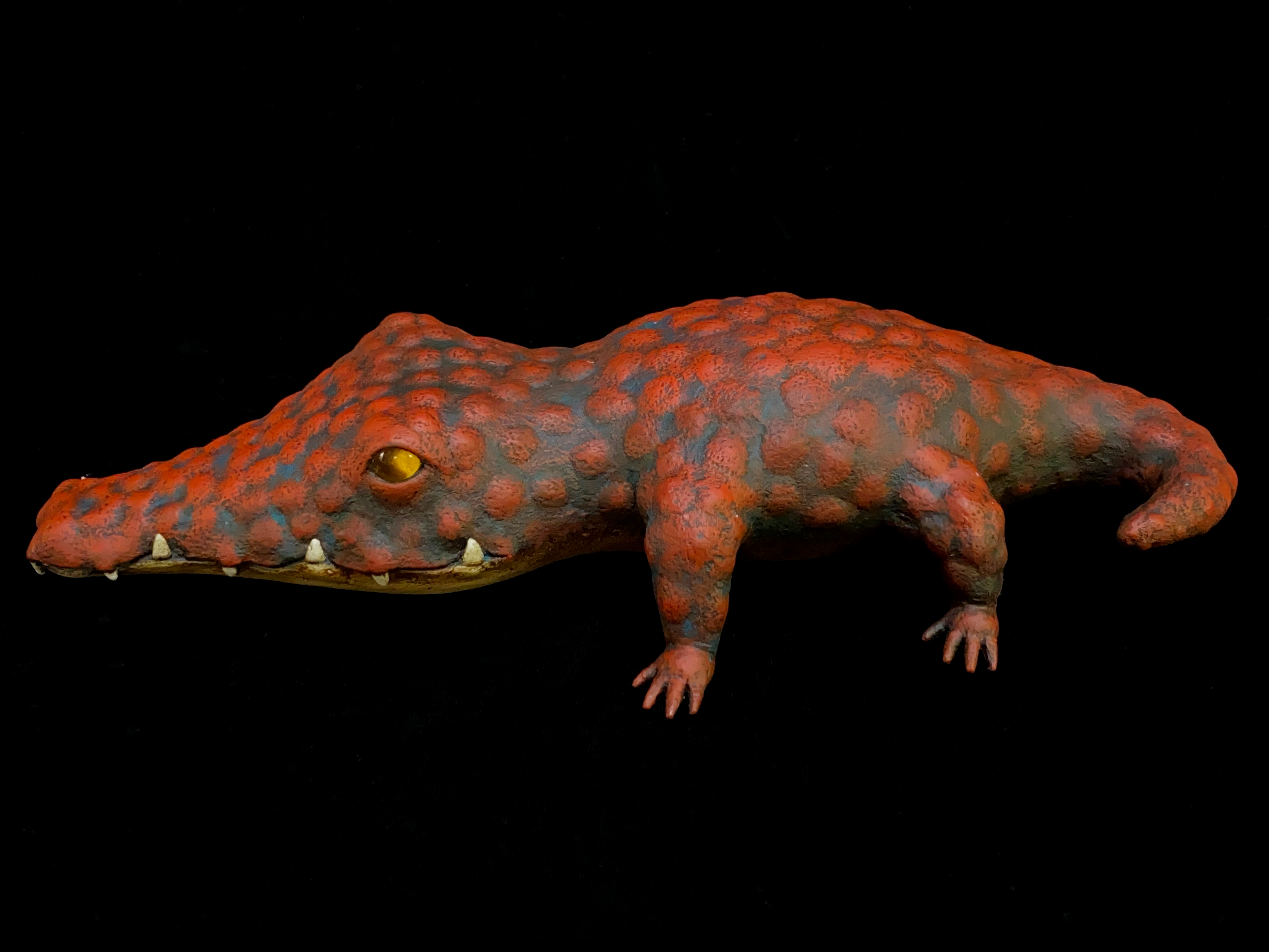 ヴァシレク・ターシャ Vasilek Tasha「Crocodile」画像