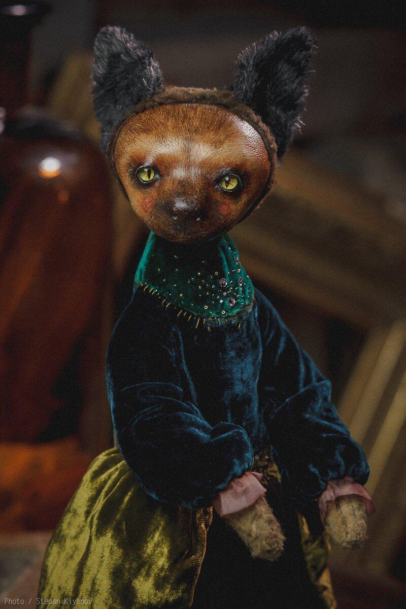 猫のオリヴィヤ画像