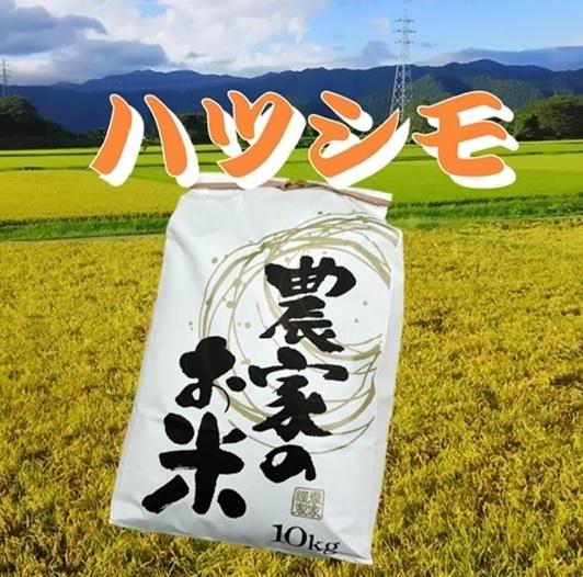 みんなで耕し、みんなで食べる。1年を田畑と一緒に生きる。遠藤農園「家族の米(ハツシモ)」白米画像