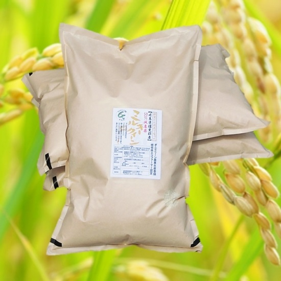 29年産「特別栽培米」 モチモチ食感の「ミルキークイーン」 玄米30Kg(精米可) 白鳥ファーム<送料無料>の画像