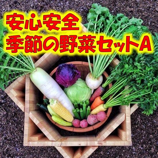 【無農薬・有機肥料】季節の野菜セットA 7~8種類 【送料無料】北海道・沖縄・離島は追加送料の画像