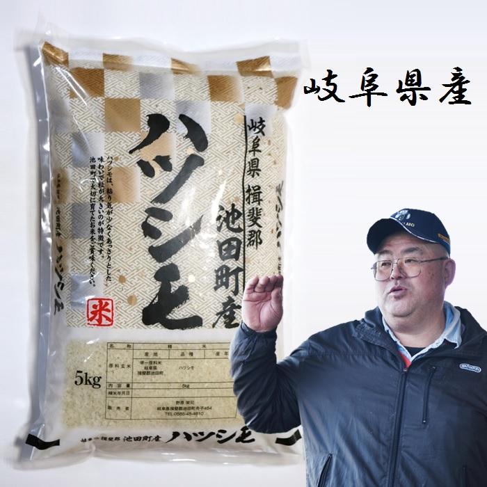 28年 ハツシモ 白米5Kg 米農家 野原栄司の画像