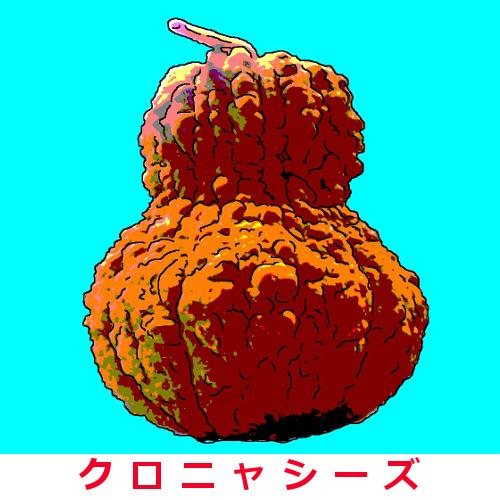 鹿ヶ谷かぼちゃ 25粒画像