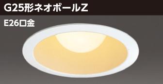 BFD-10002 電球形蛍光灯照明器具画像