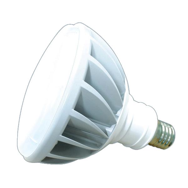 LED電球・ランプ