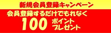 新会員100Pサービス