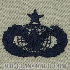 部隊防護章 (シニア)(Force Protection Badge, Senior)[ABU/パッチ]の画像