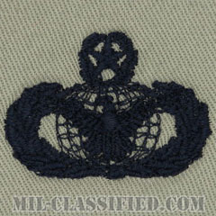 部隊防護章 (マスター)(Force Protection Badge, Master)[ABU/パッチ]の画像