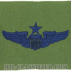 航空機操縦士章 (シニア・パイロット)(Pilot Badge, Senior)[サブデュード/ブルー刺繍/パッチ]の画像
