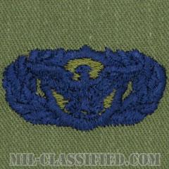 警備機能章 (ベーシック)(Security Police Functional Badge, Basic)[サブデュード/ブルー刺繍/パッチ]の画像