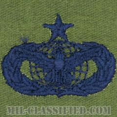 部隊防護章 (シニア)(Force Protection Badge, Senior)[サブデュード/ブルー刺繍/パッチ]の画像