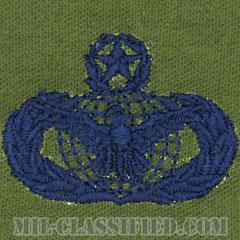 部隊防護章 (マスター)(Force Protection Badge, Master)[サブデュード/ブルー刺繍/パッチ]の画像