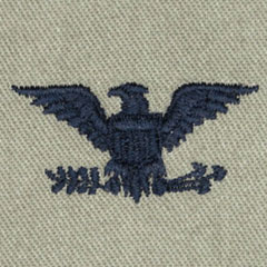 大佐(Colonel (COL))[ABU/空軍階級章/パッチ/ペア(2枚1組)]の画像