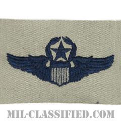 航空機操縦士章 (コマンド・パイロット)(Air Force Command Pilot Badge)[ABU/パッチ]の画像