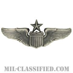 航空機操縦士章 (シニア・パイロット)(Air Force Senior Pilot Badge)[カラー/燻し銀/バッジ]の画像