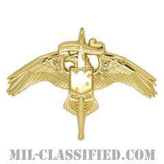 アメリカ海兵隊特殊作戦コマンド章(MARSOC)[カラー/鏡面仕上げ/バッジ]の画像