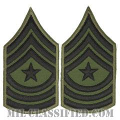 上級曹長(Sergeant Major (SGM))[サブデュード/カットエッジ/ペア(2枚1組)/パッチ/レプリカ]の画像