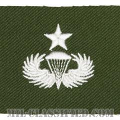空挺章 (シニア)(Parachutist Badge, Senior)[カラー/パッチ/レプリカ]の画像