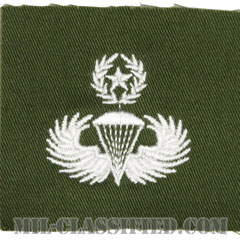 空挺章 (マスター)(Parachutist Badge, Master)[カラー/パッチ/レプリカ]の画像