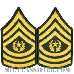 最先任上級曹長(Command Sergeant Major (CSM))[カラー(グリーン)/メロウエッジ/階級章(男性用)/パッチ/ペア(2枚1組)]の画像