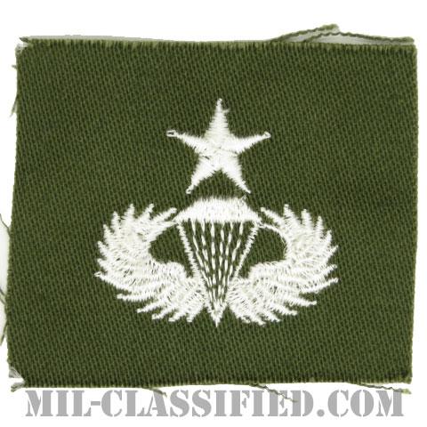 空挺章 (シニア)(Parachutist Badge, Senior, Senior)[カラー/パッチ]の画像
