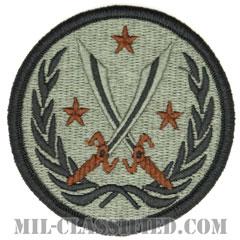 生来の決意作戦・連合タスクフォース(対ISIL)(CJTF-OIR)[UCP(ACU)/メロウエッジ/ベルクロ付パッチ]の画像