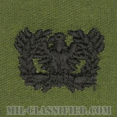 准尉章(Warrant Officers)[サブデュード/兵科章/パッチ/ペア(2枚1組)]の画像