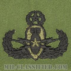 爆破物処理章 (マスター)(Explosive Ordnance Disposal (EOD), Badge, Master)[サブデュード/パッチ]の画像