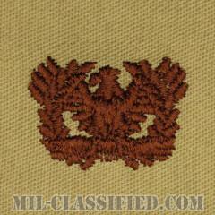 准尉章(Warrant Officers)[デザート/兵科章/パッチ/ペア(2枚1組)]の画像