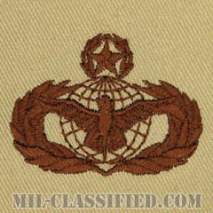 部隊防護章 (マスター)(Force Protection Badge, Master)[デザート/パッチ]の画像