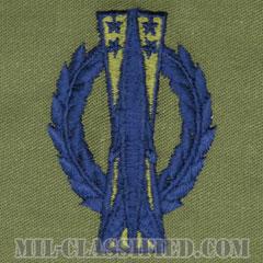 ミサイル運用章 (ベーシック)(Missile Operations Badge, Basic)[サブデュード/ブルー刺繍/パッチ]の画像